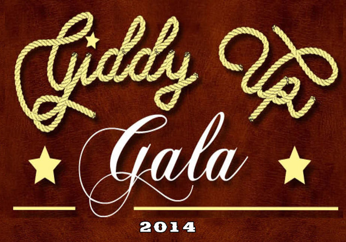 Hill Country Education Foundation Gala